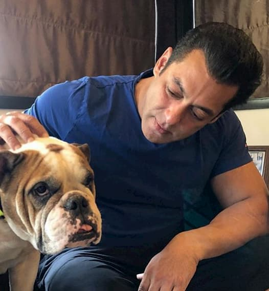 Bigg Boss 14 Salman Khan Salary: Host of the BB 14 charging per episode