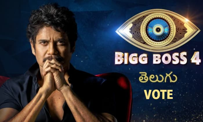 Bigg Boss Telugu season 4 Vote, Voting Results, Elimination List